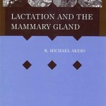 Lactation Mammary Gland