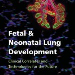 Fetal & Neonatal Lung Development : Clinical Correlates and Technologies for the Future