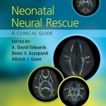 Neonatal Neural Rescue: A Clinical Guide